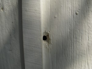 One of the bullet holes in the Innis House